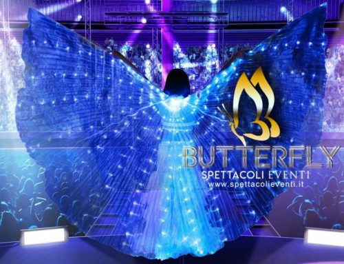 Spettacolo farfalle luminose a led